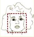 тип лица квадрат